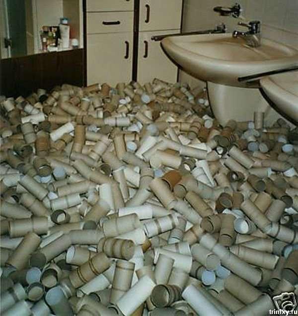 Що можна зробити із залишками туалетного паперу (3 фото)