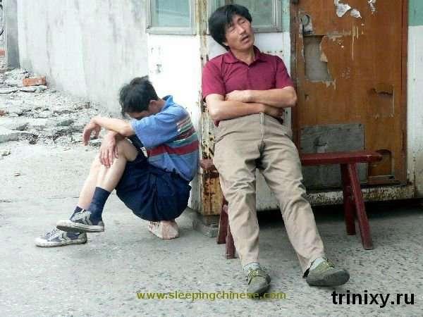 Сплячі китайці (102 фото)