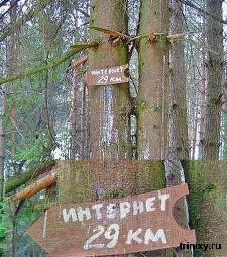 День Інтернету в Росії. Підбірка прикольних картинок (67 картинок)