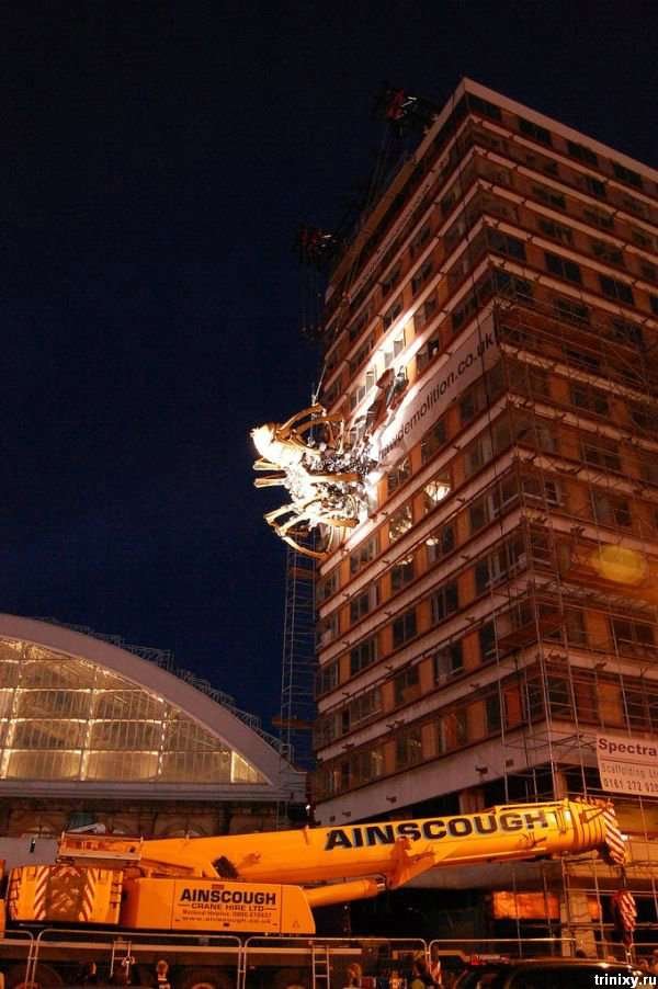 Гігантський павук в Ліверпулі (24 фото)