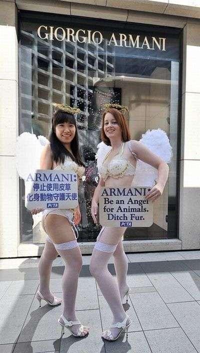 Чергова акція PETA. Тепер у Пекіні (10 фото)