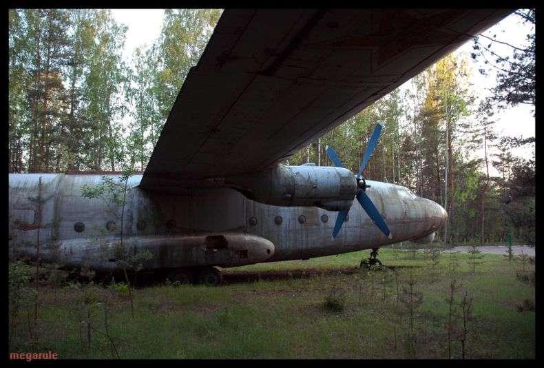 Літак Президента Медведєва (46 фото)