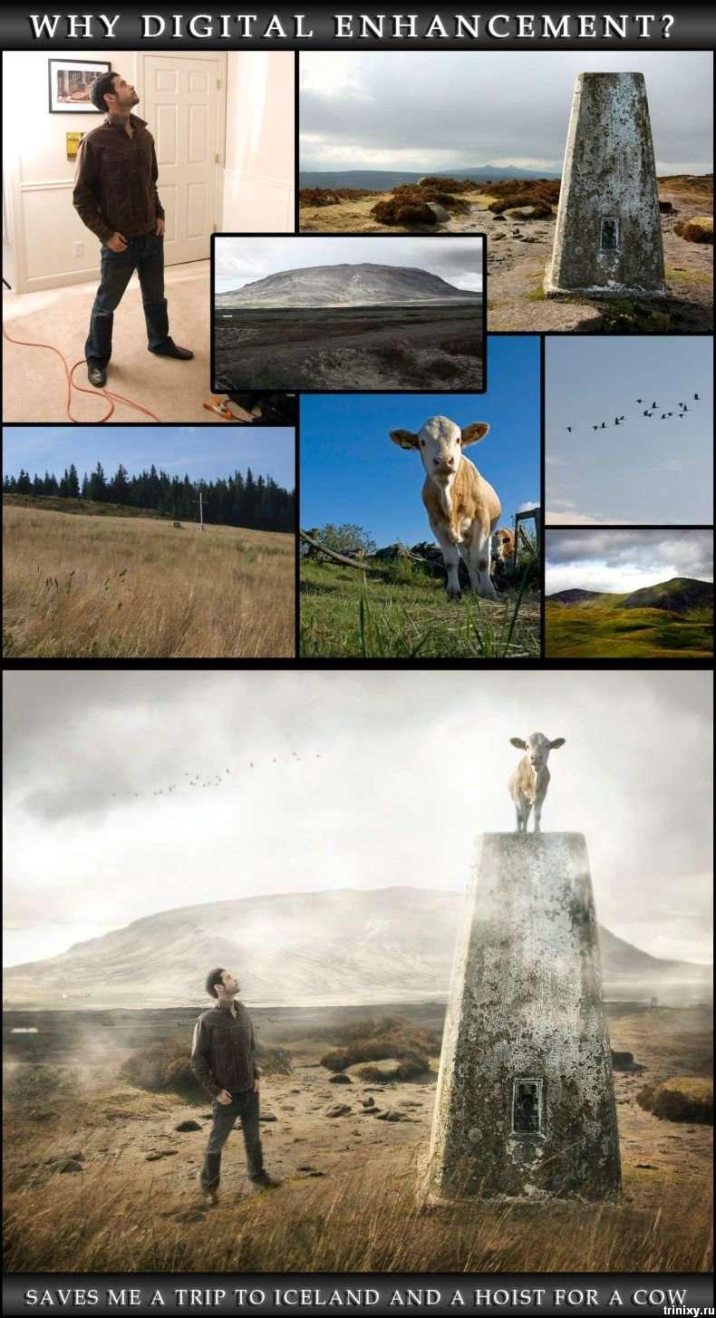 Прикольні картинки (94 фото)