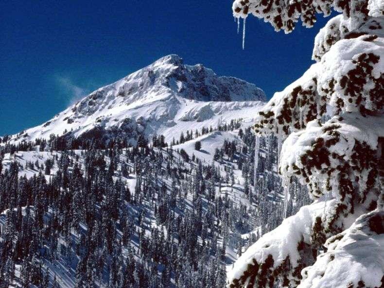 Красуня зима (40 фото)