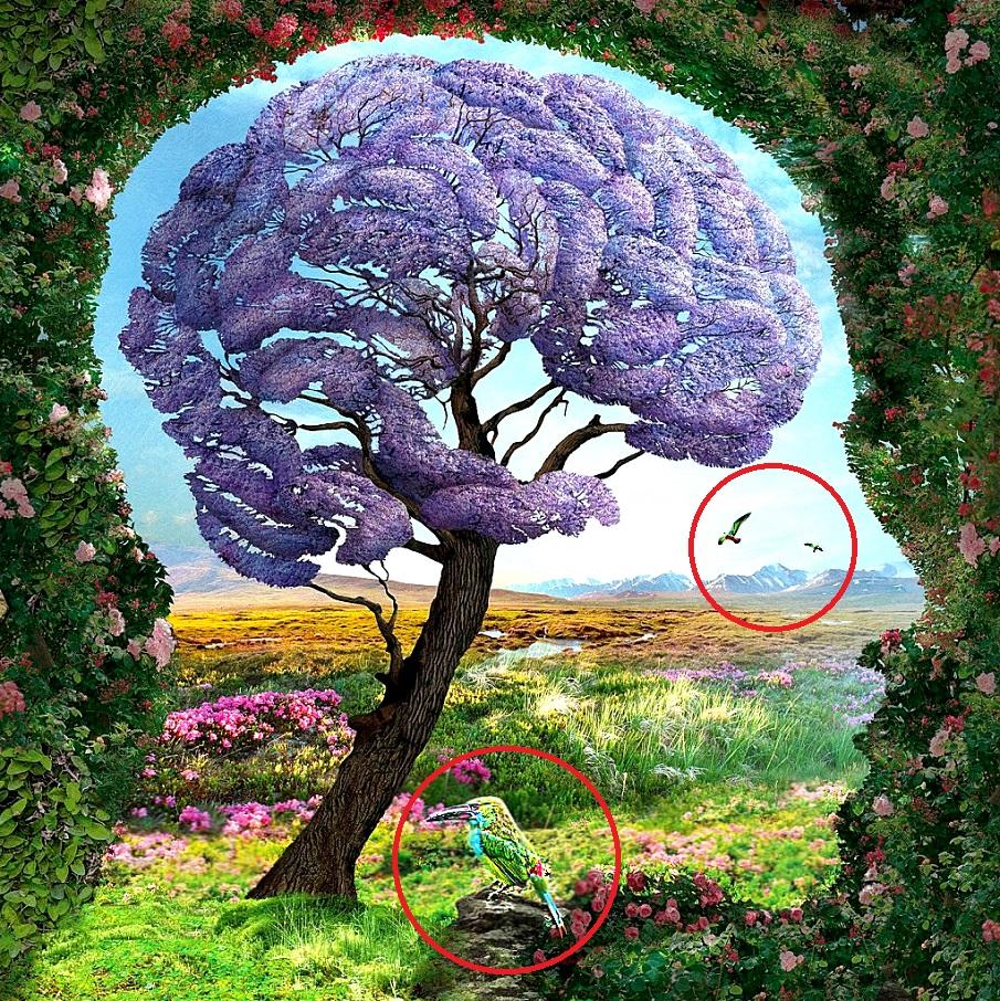 Первое, на что вы обратите внимание на картинке, раскроет все тайны вашей личности Познавательное